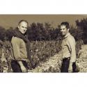 Les Vignobles Brunier Vieux Télégraphe